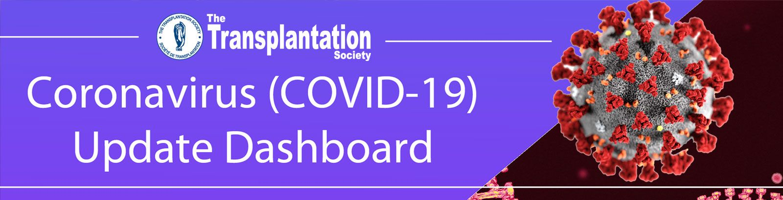 Coronavirus Dashboard Covid 19